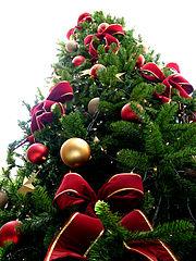 Weihnachten: nur mit Weihnachtsbaum?