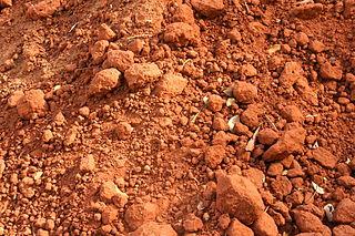 Boden in Auroville, Tamil Nadu, Indien